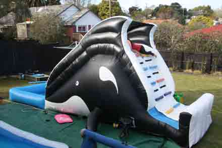 orca-bouncy-water-slide4-150
